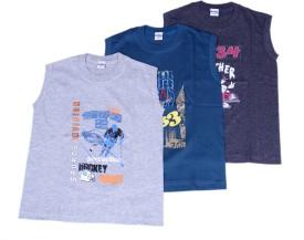 Padma Printed Boy's Round Neck T-Shirt (Pack Of 3)