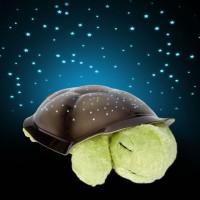Inventure Retail Turtle Night Sky Constellations Projector Floor Night Lamp (32 Cm, Green)