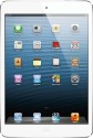 Apple 16GB iPad Mini with Wi-Fi: Tablet
