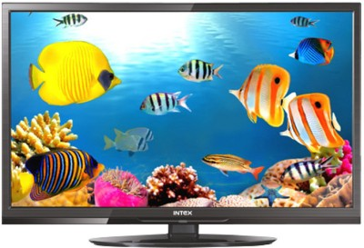 Intex 2410HD 24 inch HD Ready LED TV
