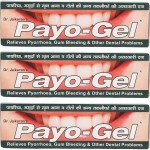 Dr. Jaikaran Toothpastes Dr. Jaikaran Payo Gel Herbal Toothpaste