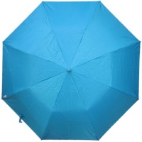 Fendo Auto Open 2 Fold Nylon Women Strawberry _b Umbrella (Blue)