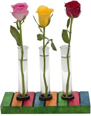 Hashcart Multicolor Wooden Test Tube Planter Table Décor