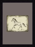 ART4U Equine Study II - Framed Print 16 Inch X 22 Inch (Multicolor)