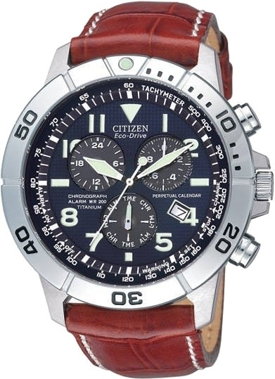 citizen eco drive analog for buy citizen eco