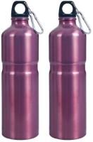 Whetstone 739 Ml Water Purifier Bottle (Red)