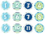 Pearhead Baby Milestone, Blue Yoyo Friction Sticker